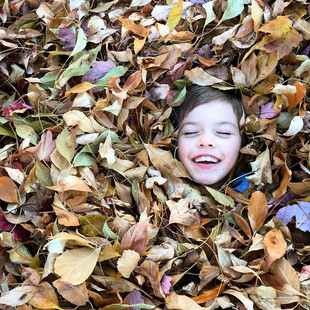 Occupational Therapy Fall Activities for Home